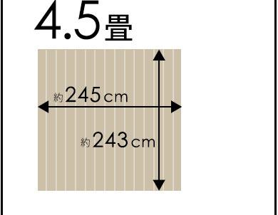団地間4.5畳245×245cm
